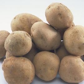 孕妇为什么不能吃发芽的土豆
