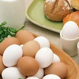 产后能过多吃蛋吗